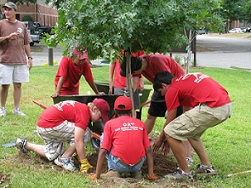group community service projects