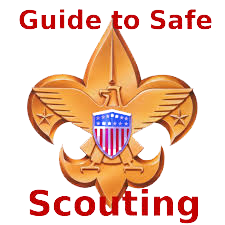 Guide to Safe Scouting logo