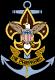 Sea Scouts logo